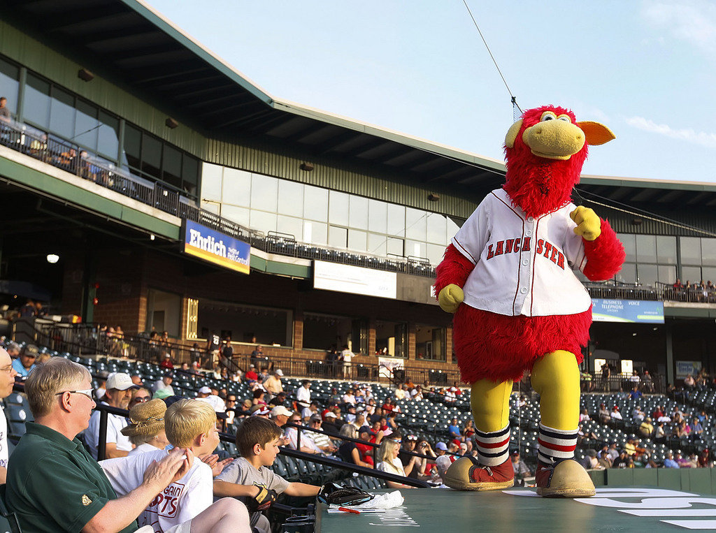 Clipper Stadium Cylo mascot